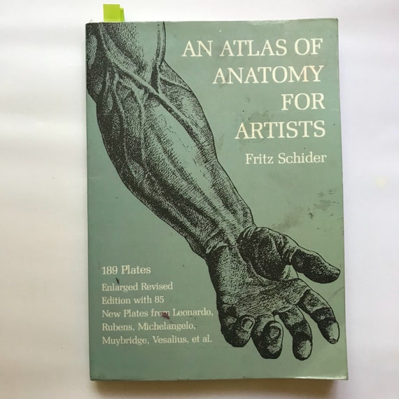 An Atlas of Anatomy for Artists by Fritz Schider Vintage | Etsy