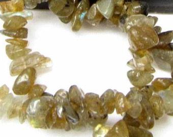 Labradorite Chips 5 to 10 mm 1 strand Semi Precious Stone Bead Necklace Bracelet Jewelry Bead  Supply #209
