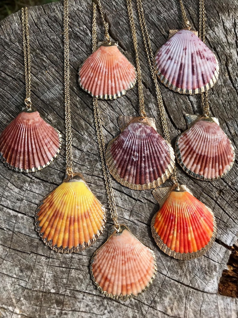 Gold dipped seashell necklace  choice of one  scallop shell image 0