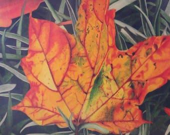 Fallen Leaves by Artist Jenny Koch