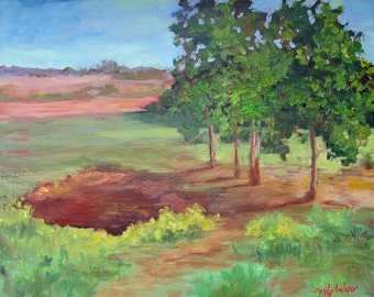"Landscape Oil Painting Original 11x14 Canvas ""Buffalo Wallow"" by Cheri Wollenberg"