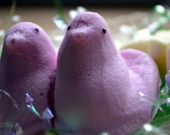 Easter Soap - Sweet Chicks - Novelty Soap - Candy Soap - Kids Soap - Easter - Spring - Marshmallow Soap