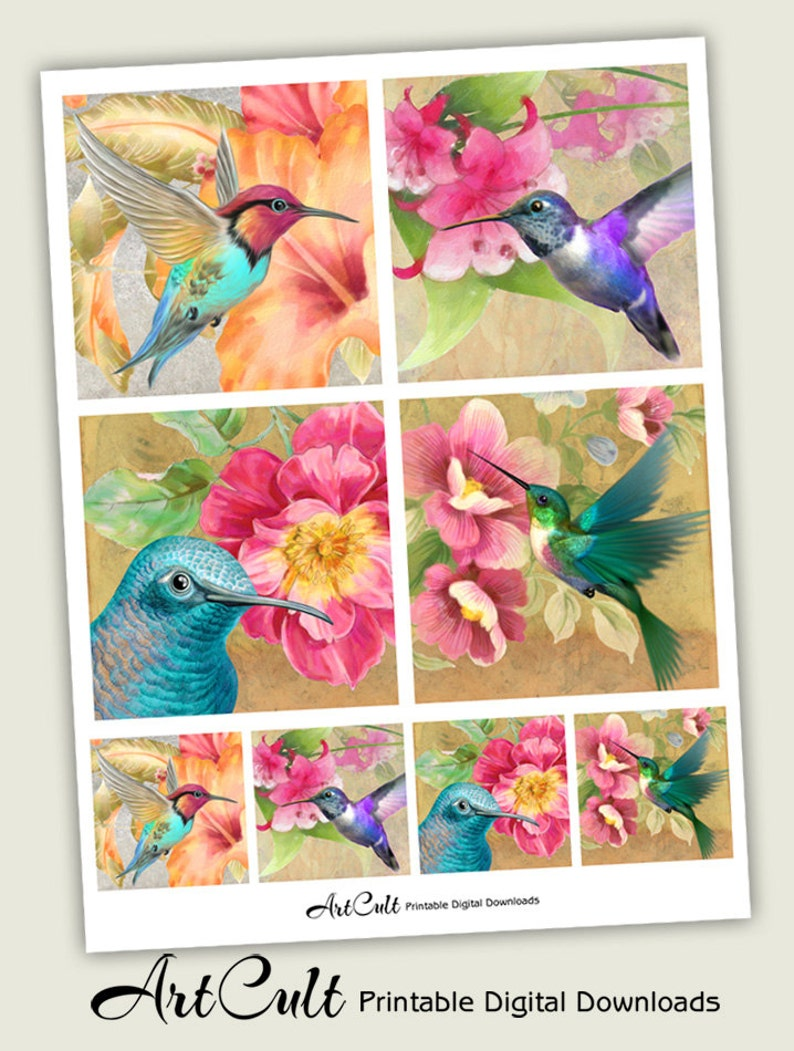 Printable 3.8x3.8 size images HUMMING BIRDS Digital Sheet instant download for Coasters Greeting cards Gift tags scrapbooking craft paper