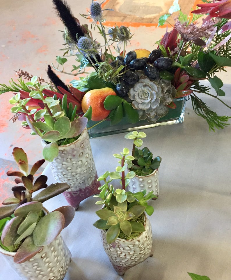 Wondrous Table Centerpiece Succulents Fresh Flowers Fruits Wedding Decor Succulent Arrangement Complete Home Design Collection Barbaintelli Responsecom