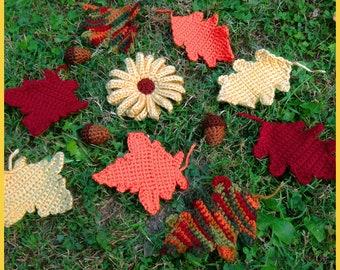 Autumn Mix Crochet Pattern Set