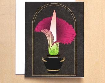 Carnivorous Plant Study 2
