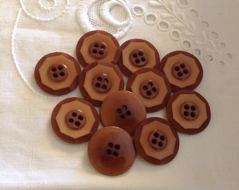 11 Vintage Vegetable Ivory Buttons in Natural Tan Brown color
