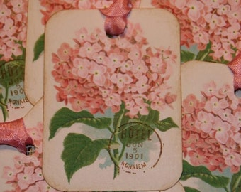 Pink Hydrangea Gift Tags