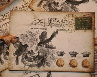Bird Nest and Eggs Altered Art Vintage Postcard
