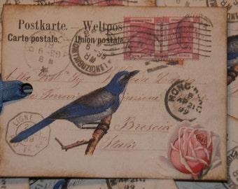 Blue Bird Vintage Postcard Altered Art Hang Tags