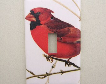 Single Red Cardinal light switch cover switchplate