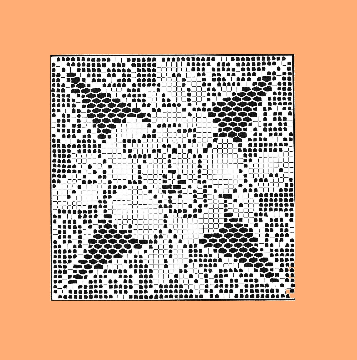 Rose filet Crochet PATTERN 8