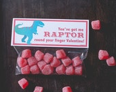 INSTANT DOWNLOAD Printable Classroom Valentines Treat Candy Bag Topper Dinosaur Raptor Valentine Candy printable print at home funny dino