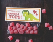 INSTANT DOWNLOAD Printable Classroom Valentines Treat Candy Bag Topper Dinosaur Triceratops Land before time dino valentine print at home