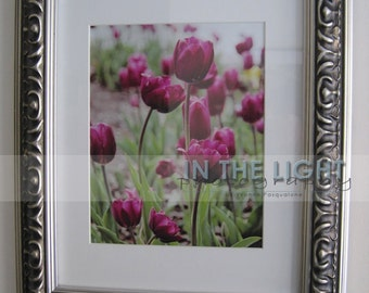 READY To SHIP - Purple Tulips - FRAMED Fine Art Photography - 8x10 photo in 11x14 frame
