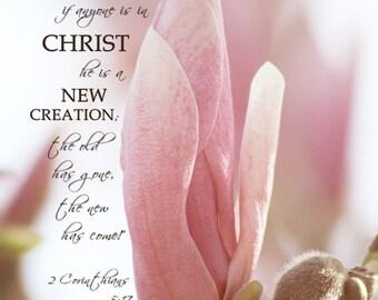 Spring Tree Blossom - 2 Corinthians 5:17 - fine art photography