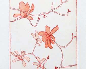 original etching and aquatint of magnolia blossom flowers