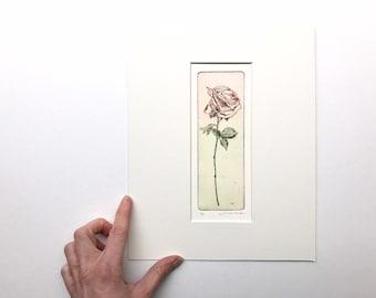 original color etching of a rose