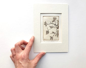 original etching of a tree in spring
