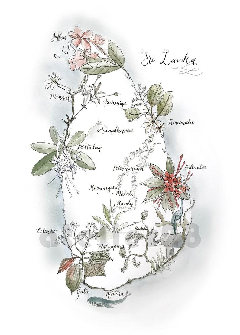 Sri Lanka Karte Zum Drucken.Giclée Druck Von Einer Karte Von Sri Lanka Illustrierte Pflanzen Mit Flora