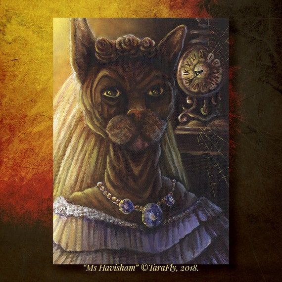 Ms Havisham Sphinx Cat 5x7 Fine Art Print