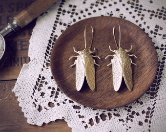 Cicada Song Earrings - Brass Insect Jewelry