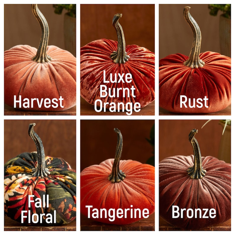 Small Velvet Pumpkins Create Your Own Set of 3 Fall image 2