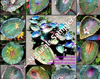 TEN leaves - Bird Baths, Feeders & Cement garden sculpture (Mixed Natural finish - CUSTOM COLORS) stand over flowers in garden and pots