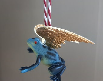 Golden winged blue tree frog
