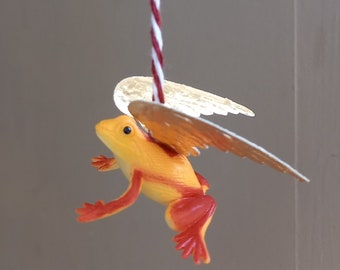 Golden winged yellow tree frog