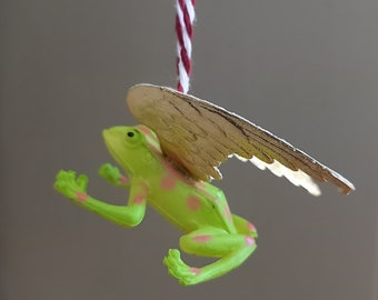 Golden winged green tree frog