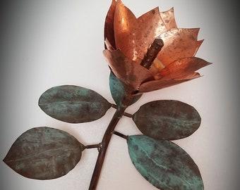 Copper Plated Real Magnolia Leaf Skeleton Copper Leaf Skeleton Electroformed Nature Art Piece 5