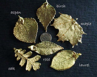1-1.5 inch  Real Leaf Dipped in 24k Gold ROSE Leaf Pendant Charms Sterling Silver or Copper  Genuine Real Leaf nature woodland spl