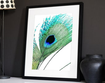 Diy Peacock Wall Art