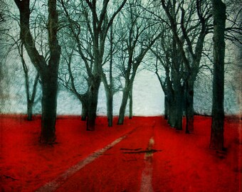 Red Forest Print Nature Photography Montreal Art Parc Laurier Red Woodland Gothic Decor Forest Photography Print - The Crimson Forest