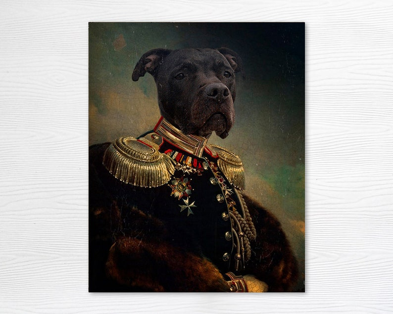 Pit Bull Gifts General Dog Pet Portrait Animal Photography Gift for Dog Lover Print General Nanook