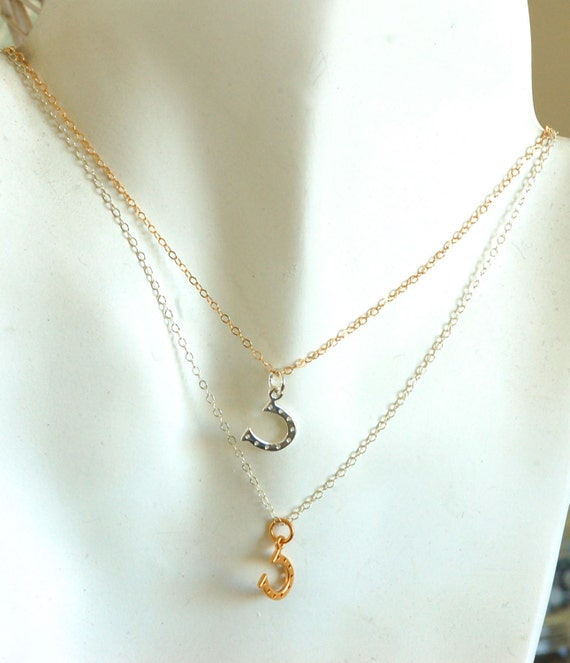 Silver and Gold Horse Shoe Necklace
