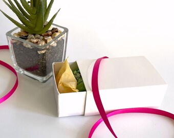 "72 White Slider Boxes 3"" x 2"" x 1""   Party Favor Box   Candy Box   Match Box Slide Open SALE PRICE"