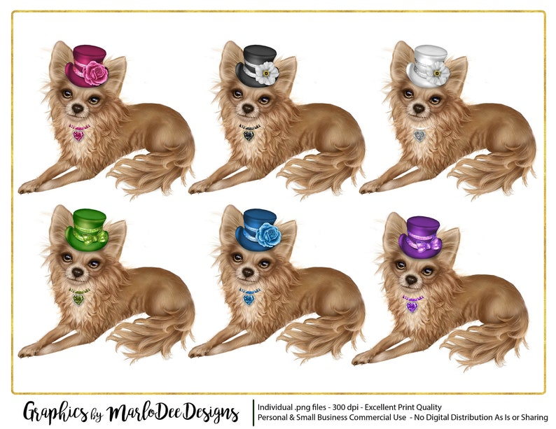Light Brown Chihuahua Dogs with Hats Graphics  Commercial Use image 0