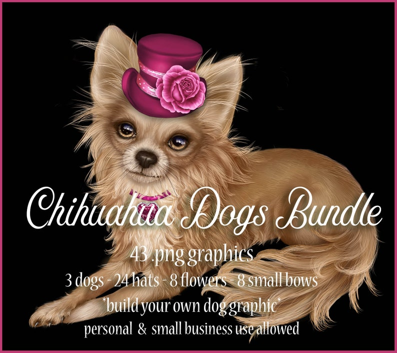 Chihuahua Dog Graphics Bundle  Commercial Use Digital image 0