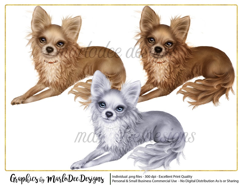 Chihuahua Dog Graphics  Commercial Use Digital Designer Tools image 0
