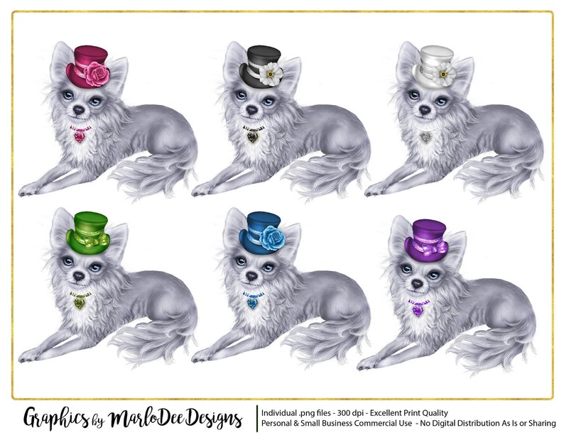 White Chihuahua Dogs with Hats Graphics  Commercial Use image 0