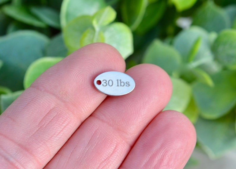 30 lbs Weight Watcher  Custom Laser Engraved Stainless Steel Tiny Oval Charm CC551