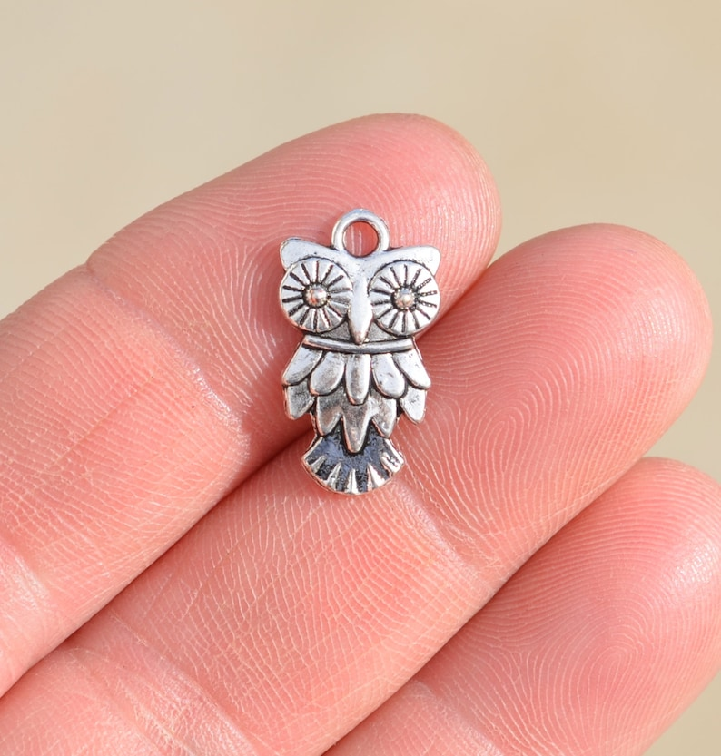 1  Owl Silver Tone Charm SC1390 image 0