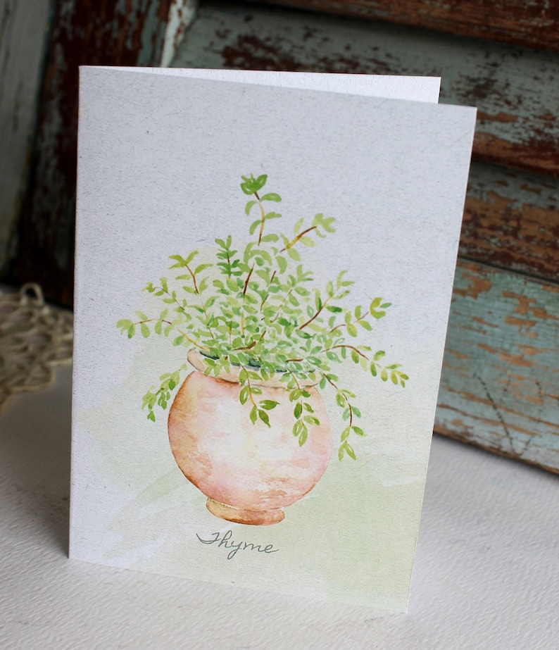 Note Cards Potted Herbs Note Cards Set of Six Boxed Note Cards Herb Greeting Cards Note Cards with Herbs Herb Stationery