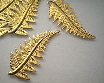 6 large brass fern leaf charms