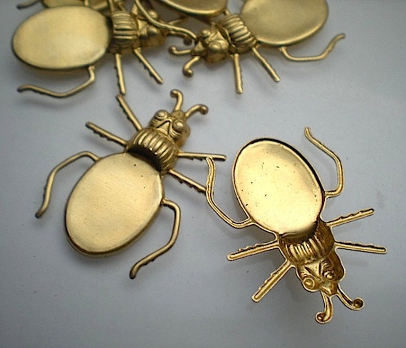 No 2 6 brass blister beetle charms
