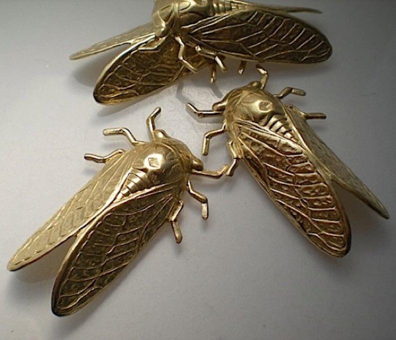 4 large brass cicada charms image 0