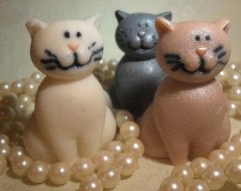 Kitten Specialty Soap Set