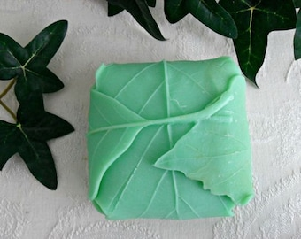 Nature's Gift Handcrafted Soap